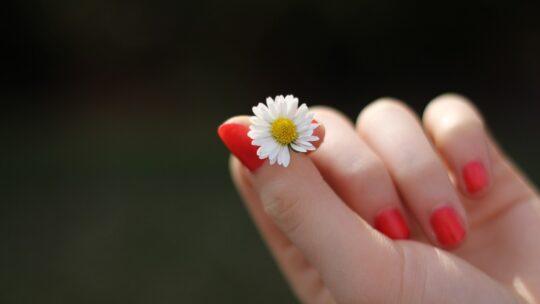 Comment utiliser l'huile d'argan sur les ongles?